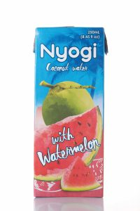 nyogi_watermelon_1b